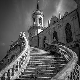 stairs.. by Dmitry Samsonov - Black & White Buildings & Architecture ( bazhenov, b&w, russia, stairs, church, bykovo, orthodox, architecture,  )