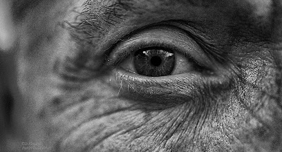 Photo: JUST ME, WATCHING YOU... getting older, some wrinkles, so what, proud of it, little selfi, hope you like it :)  noire-29112012   Survivor- Eye Of The Tiger (Live)                                                #dailydepthoffield by +Vince Ong+Nuraini Ghaifullah+Daily Depth Of Field #fotoamateur  by +Britta Rogge+Remo Primatesta+Karsten Meyer+Markus Landsmann+Scotti van Palm+Fotoamateur+BW DIGITAL PHOTOGRAPHY CLASSIC STYLE #swdpcl by +peter paul müller #allthingsmonochrome  by +Charles Lupica+All Things Monochrome #1000photographersbwmonochrome by +Robert SKREINER+Victor Westerhout+Nikola Nikolski+10000 Photographers BW Monochrome #hqspmonochrome  by +Blake Harrold+Bill Wood+HQSP Monochrome #hqspnonnaturephotos  by +Alexandre Fagundes de Fagundes+Rhea Surgimath+Alison Thurston+HQSP Non-Nature Photos #givemeyourbestshot by +Gene Bowker+Tisha Craw+lane langmade+Brad Buckmaster #creative366project  by +Takahiro Yamamoto+Jeff Matsuya+Creative 366 Project #breakfastclub  by +Gemma Costa+Andrea Martinez+Breakfast Club #breakfastartclub  by +Simply Arlie+Breakfast Art Club #monochrome52  #monochromemonday  #monochromephotography  #monochrome  #blackandwhitephotography