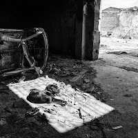Abandoned dog in an abandoned place di