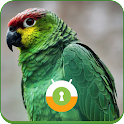 Green Parrot Wall & Lock icon