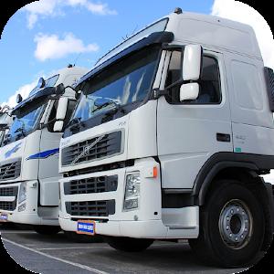 Heavy Truck Simulator 1.973 by Dynamic Games Entretenimento Ltda logo