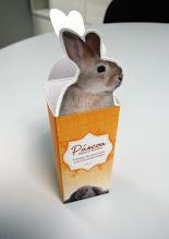 Photo: Embalagem individual para doces (Ovos, coelho de chocolate, etc.)