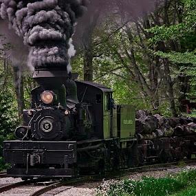 Enter Light by Chuck  Gordon  - Transportation Trains ( cass, railroad, shay, train, steam )