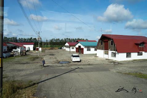 コタニアグリ農場