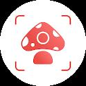 Picture Mushroom - Mushroom ID icon