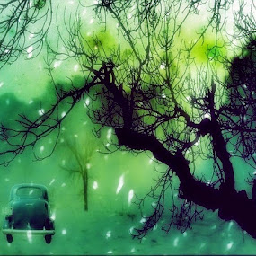 MAKE BELIEVE by Anthony Power - Abstract Fine Art ( car, tree, green filter, snow, shadows )