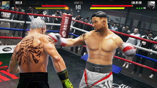 Real Boxing 2 screenshots 3