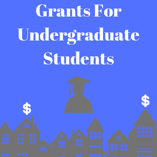 Grants For Undergraduate Students