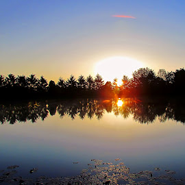Double Sun Flare at the Pond by Tina Dare - Landscapes Sunsets & Sunrises ( sky, flare, pond, sunrise, reflection, nature, trees, sun, outdoors, outside, silhouette, dawn, lily pads )