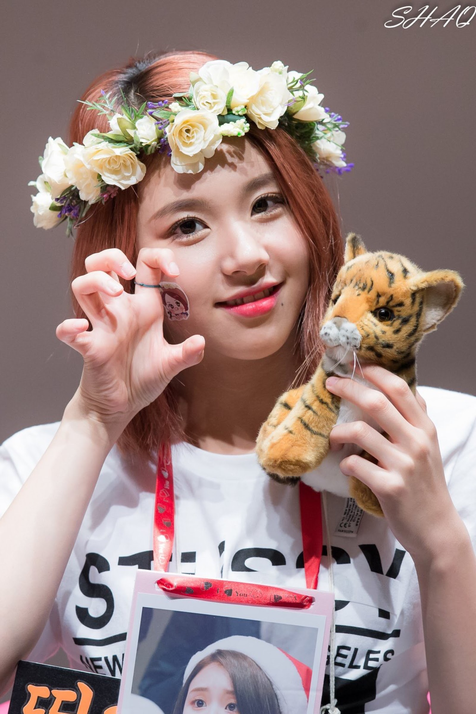 chaeyoung-lion