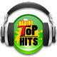 Rádio Top Hits Download on Windows
