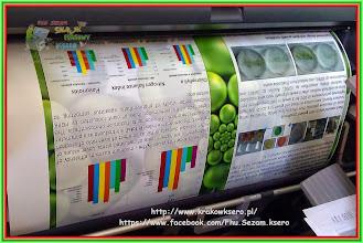 Photo: poster - plakat wielkoformatowy A0. Wydruk satynowane foto - pół mat. Realistyczne odwzorowanie koloru. Gramatura 270g/m.