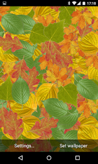 Leaf Gratis