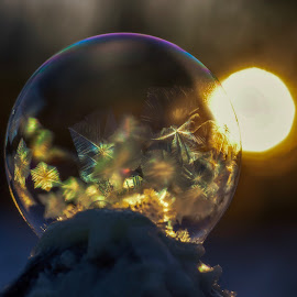 Frozen bubble  by Susan Campbell - Abstract Macro