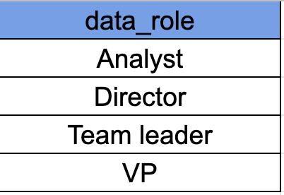 עמודת data role עם 4 תפקידים לפי הסדר הבא משמאל לימין: Analyst, Director, Team Leader, VP