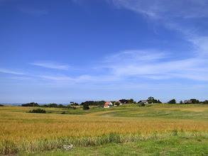 Photo: Rügener Landschaft bei Nipmerow