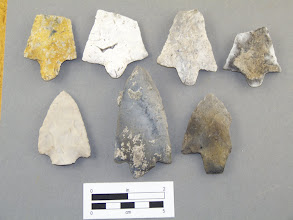 Photo: Inventory of early Florida lithics.  Compared to many areas some of Florida's stone is not of great quality.