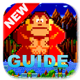 Guide For DONKEY KONG