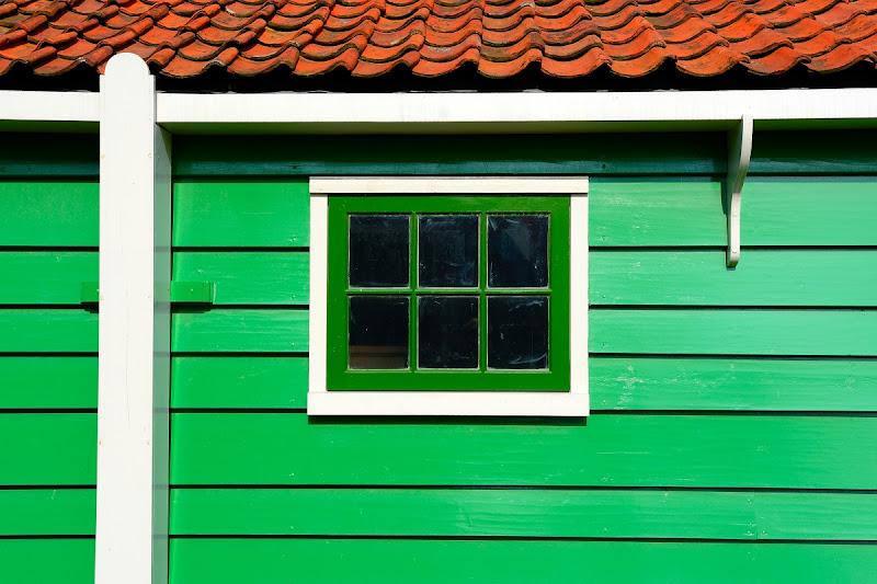 Green view di Luca Mandelli