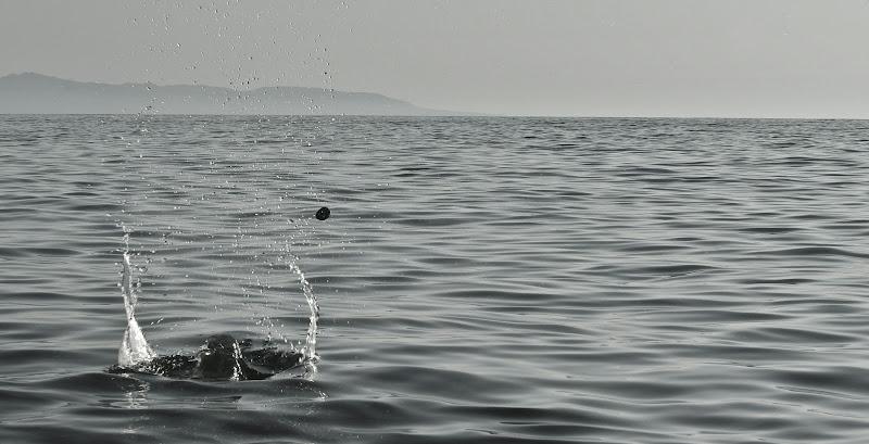 Drop into the sea di Andrea15