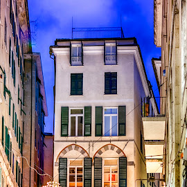 by Alessandro Scacchetti - City,  Street & Park  Historic Districts