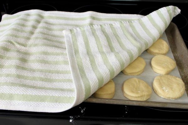 Cover the rolls with lightweight cloths, like cotton dish towels, and allow them to...