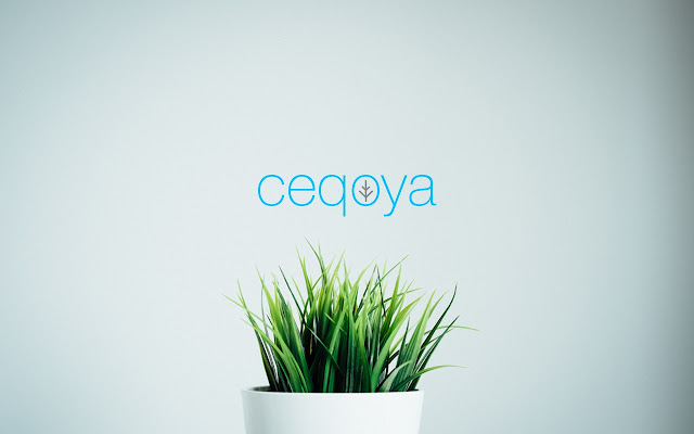 Ceqoya - A search engine to help eco projects