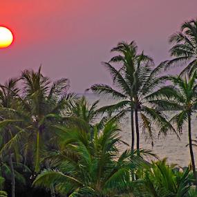 by Mikhail Romanovski - Landscapes Sunsets & Sunrises (  )