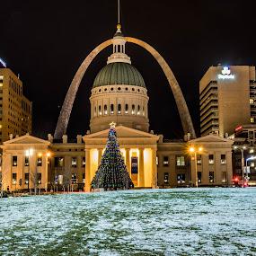 St. Louis Christmas by Darrin Ralph - City,  Street & Park  Skylines ( arch, snow, christmas tree, night, nightscape, city )