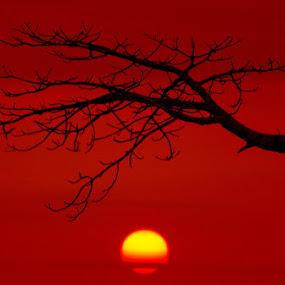 End  by Carlos Palhau - Landscapes Sunsets & Sunrises