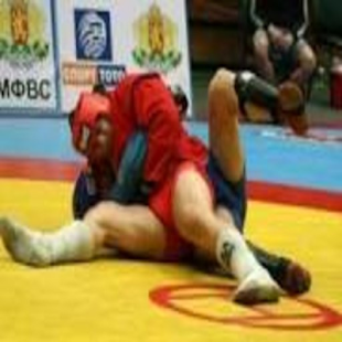 Sambo techniques- screenshot thumbnail