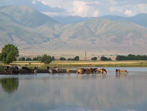 Photo: Kirgistan !