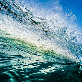 Early Glimpse by James Vodicka - Nature Up Close Water ( water, waterscape, waves, green, ocean, beach, sunlight, morning, coastal, watertube, break, surfing, gopro, blue, wave, manly, surf, barrel, light, sydney,  )