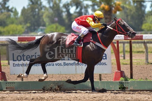 The Benjamin (Roman Ruler) se impuso en Condicional (1200m-Arena-LP).
