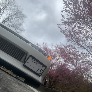 シルビア S15のカスタム事例画像 シンセラティーコーポレーションさんの2020年03月29日14:17の投稿