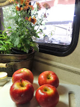 Photo: Fresh from the Orchard - Apple Orchards