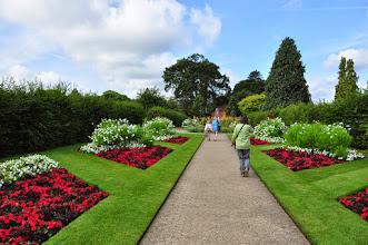 Photo: Annuals RHS gardens Wisley