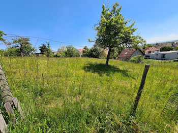 terrain à Steinbach (68)