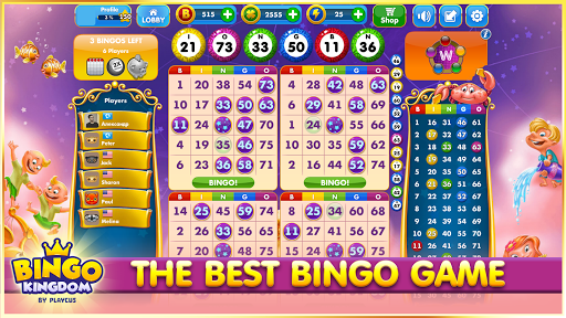 Bingo Kingdomu2122 0.002.114 screenshots 1