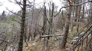 Photo: na vrhu grebena mi je garmin pokazal, da sem še več kot 100m oddaljen od vrha zato sem se malo spustil in prečil proti vrhu