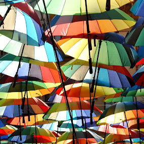 by J & M - Artistic Objects Other Objects ( decoration, colorful, umbrella, street, illustration, nice, image, romania, pretty, city )