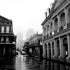 Cold New Orleans  by Jennifer Eaton Roberts - Buildings & Architecture Public & Historical ( history, new orleans, black and white, french quarter, architecture )