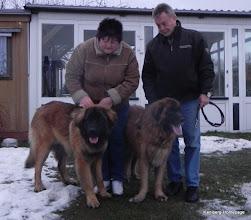 Photo: Roy links mit neuer Familie und Rüden aus einem anderen Zwinger -  lebt jetzt im Land Brandenburg