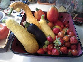 Photo: Midcycyle community garden harvest 6/2/13