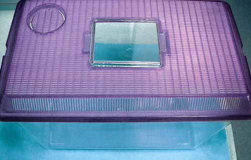 A plastic storage box used to transport birds and other small pets