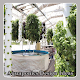 Download Aquaponics Design Ideas For PC Windows and Mac