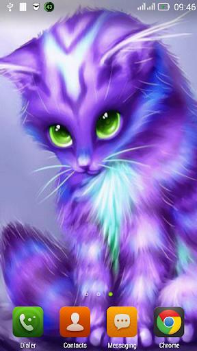 Fluffy kitty LWP
