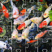 Koi Puzzle and Live Wallpaper