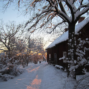 Skansen by Viive Selg - Novices Only Landscapes ( garyfonglandscapes, holiday photo contest, , #GARYFONGDRAMATICLIGHT, #WTFBOBDAVIS )