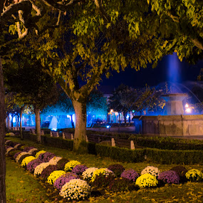 Fountain by Edu Marques - Buildings & Architecture Statues & Monuments ( night photography, park, fountains, fountain, gardens, night, flowers, garden, nightscapes, flower, nightscape )